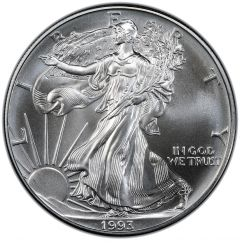 1993 American Silver Eagle Coin