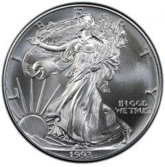 1993 American Silver Eagle Coin | Cull Condition