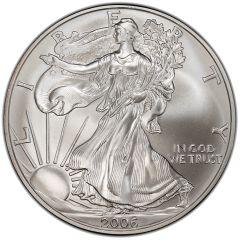 2006 American Silver Eagle Coin