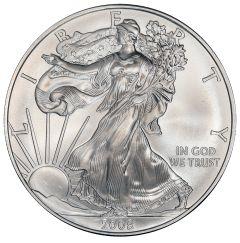 2008 American Silver Eagle Coin