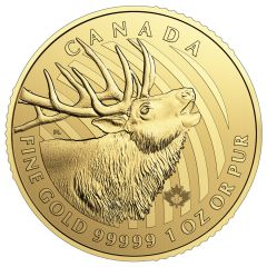 2017 1 oz Gold Crowned Elk Royal Canadian Mint - Call of the Wild - .99999