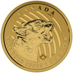 2015 1 oz Gold Growling Cougar - Call of the Wild Series - .99999 - In Assay Card