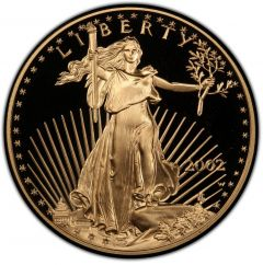 2002 1 oz American Gold Eagle Proof Coin