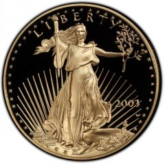 2003 1 oz American Gold Eagle Proof Coin