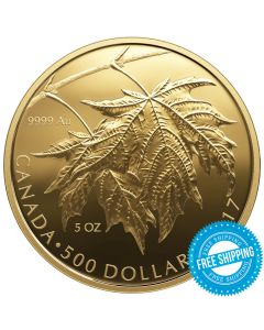 2017 5 oz Canadian Gold Maple Leaves Coin - Worldwide Mintage of Only 99