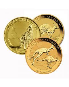 Australian Kangaroo Gold Coin 1 oz - Random Year
