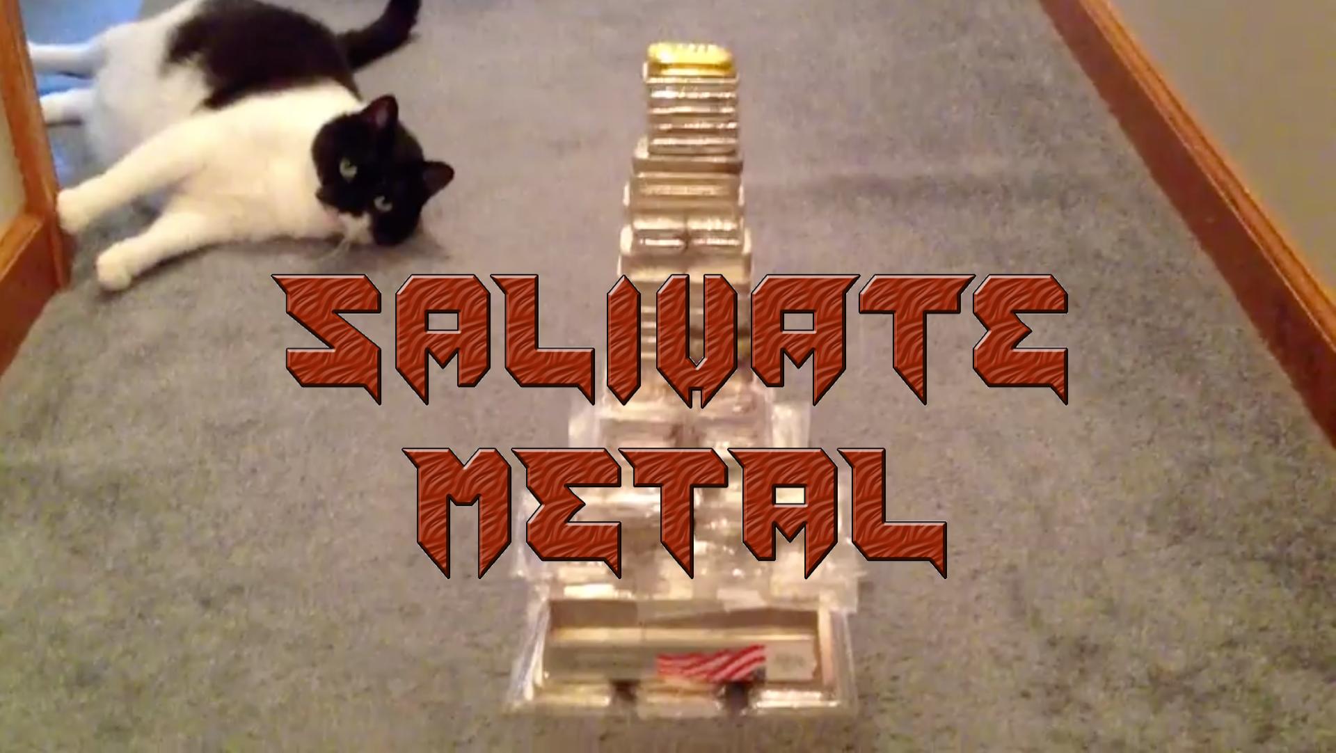 Silver Stacker Youtube Channel host SalivateMetal Salivate Metal SD Bullion SDBullion.com gold silver podcast