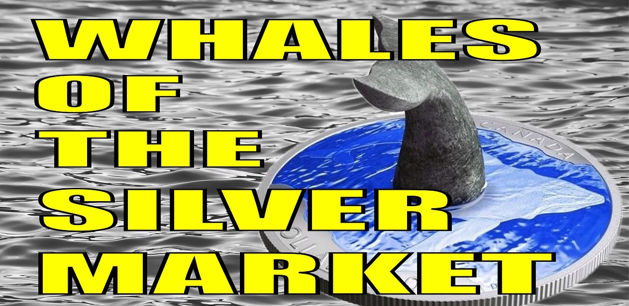 Who owns the most Silver Bullion? | Ag Whales in the Fully Fiat Era